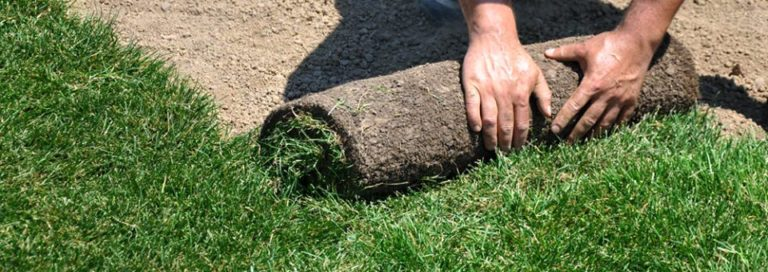 Abbey Lawn Turf Installation Service Nottingham Leicester Loughborough