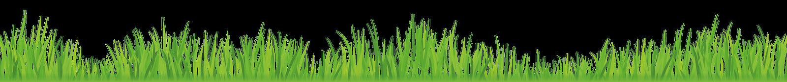 Abbey Lawn Turf Grass Row Nottingham Leicestershire Loughborough
