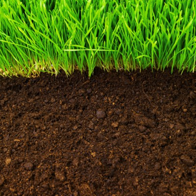 Abbey Lawn Turf Premium Top Soil Nottingham Leicestershire Loughborough