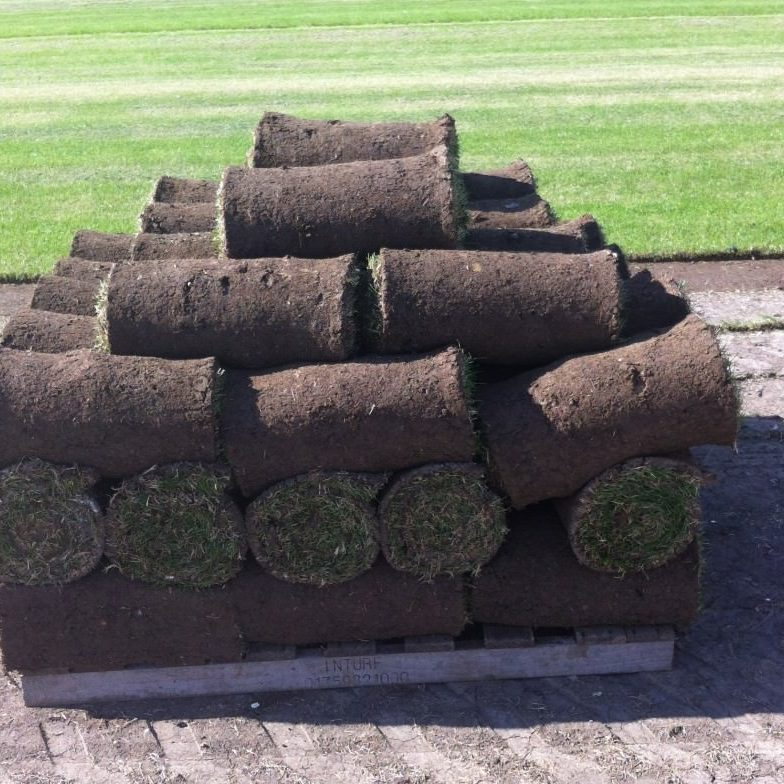 Abbey Lawn Turf Order Turf Nottinghamshire Leicestershire Loughborough
